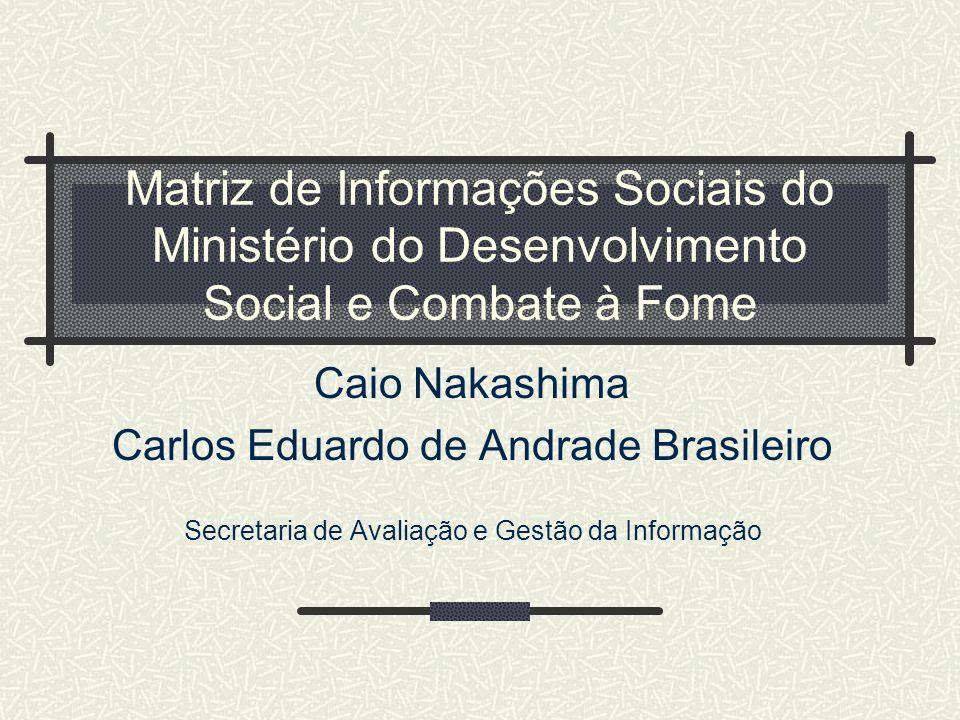 Matriz de Informações Sociais do Ministério do Desenvolvimento Social e Combate à Fome
