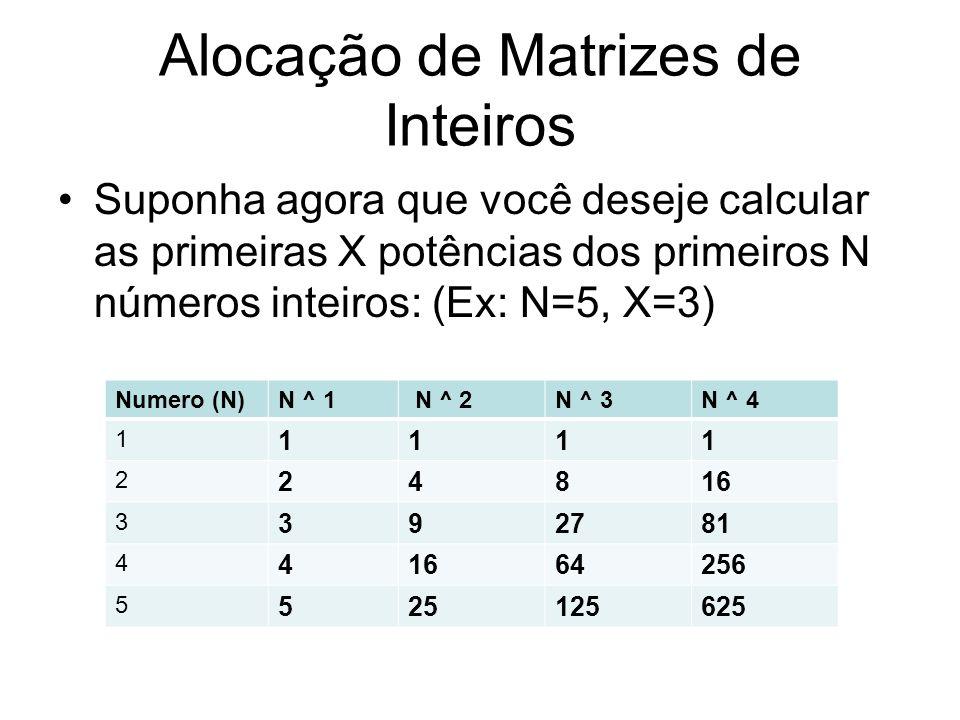 Alocação de Matrizes de Inteiros