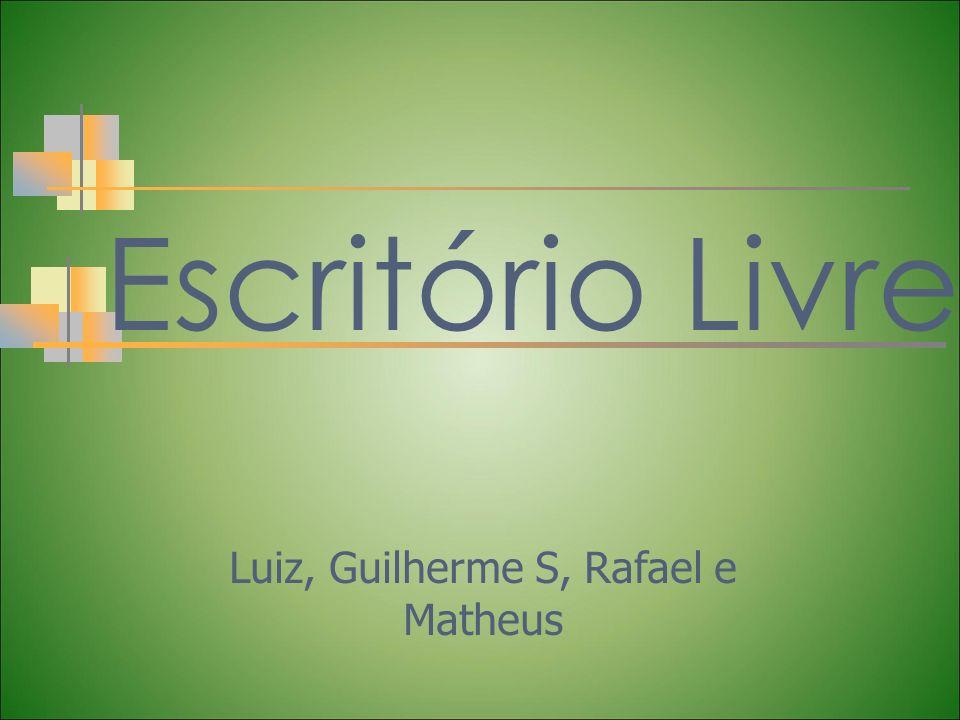 Luiz, Guilherme S, Rafael e Matheus
