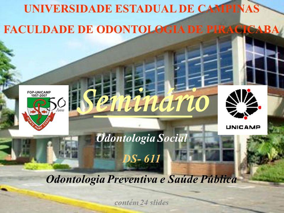 Seminário UNIVERSIDADE ESTADUAL DE CAMPINAS