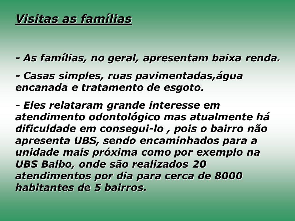 Visitas as famílias - As famílias, no geral, apresentam baixa renda.