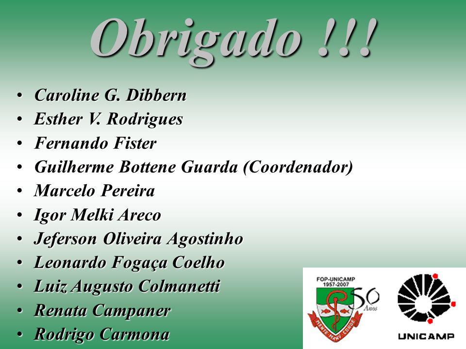 Obrigado !!! Caroline G. Dibbern Esther V. Rodrigues Fernando Fister