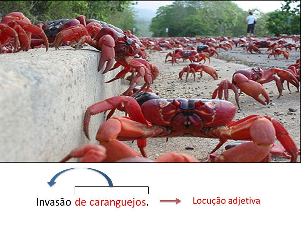 Invasão de caranguejos.