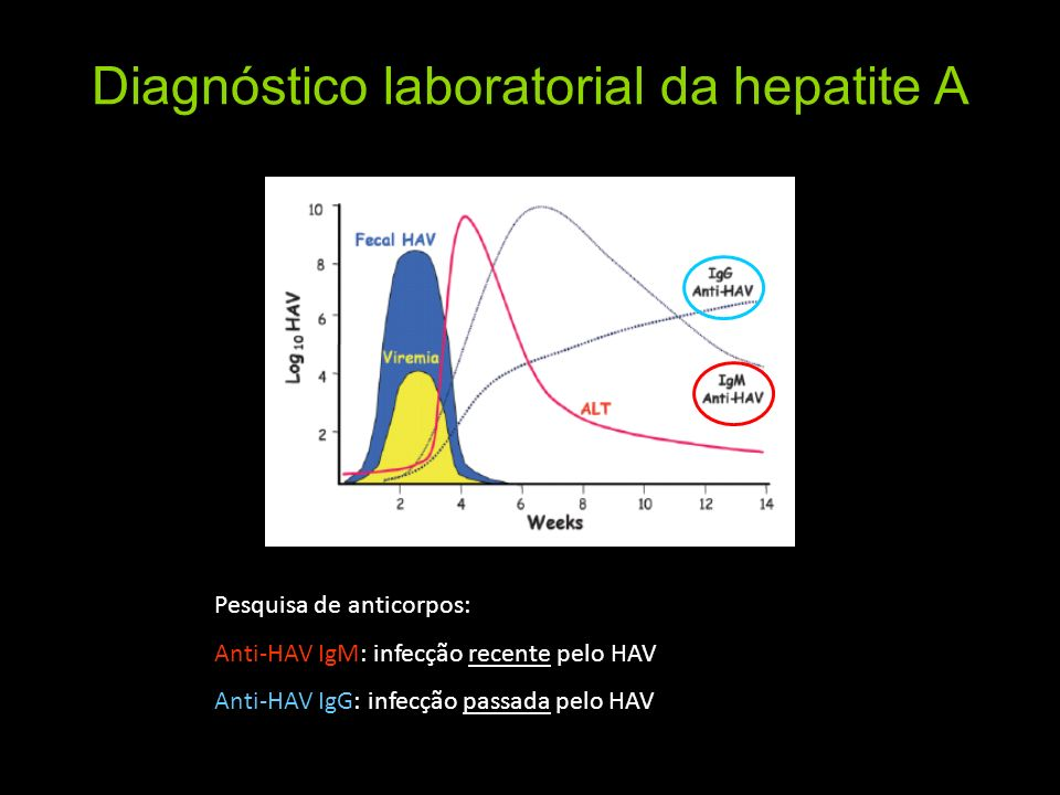 Diagnóstico laboratorial da hepatite A