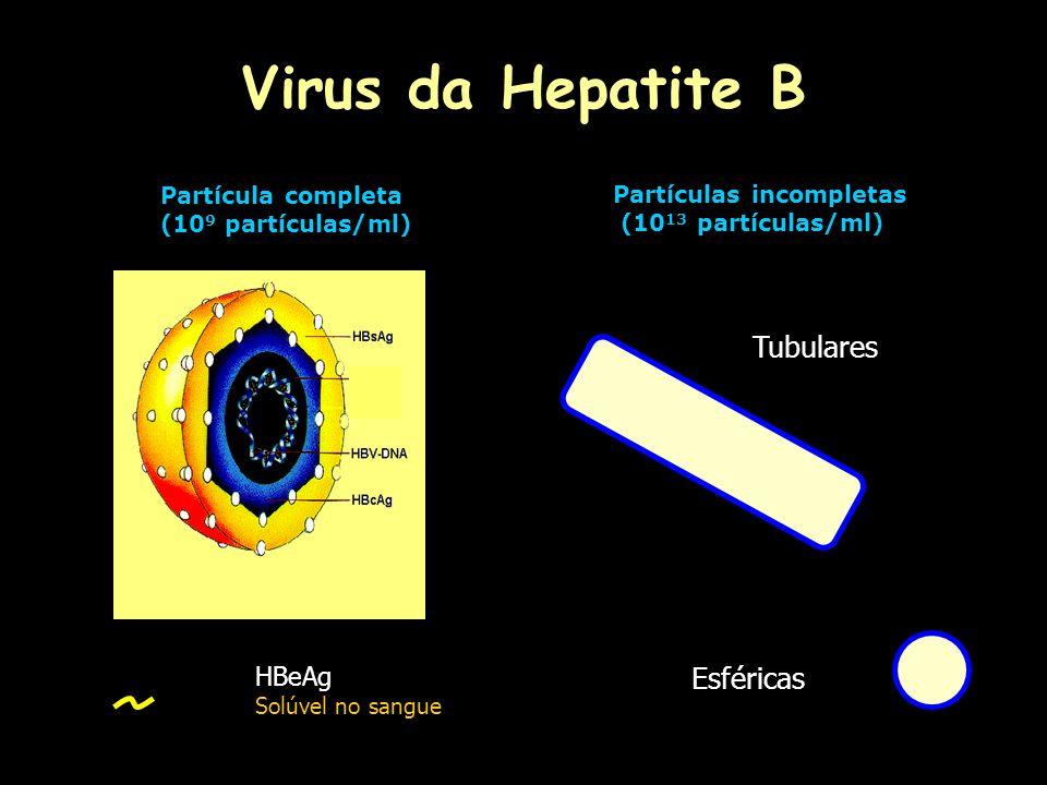 Virus da Hepatite B Estabilidade: -20ºC por vários anos