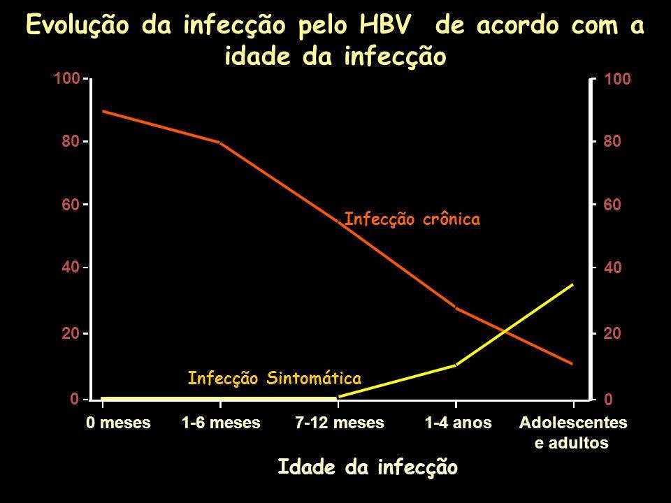 Evolução da infecção pelo HBV de acordo com a idade da infecção