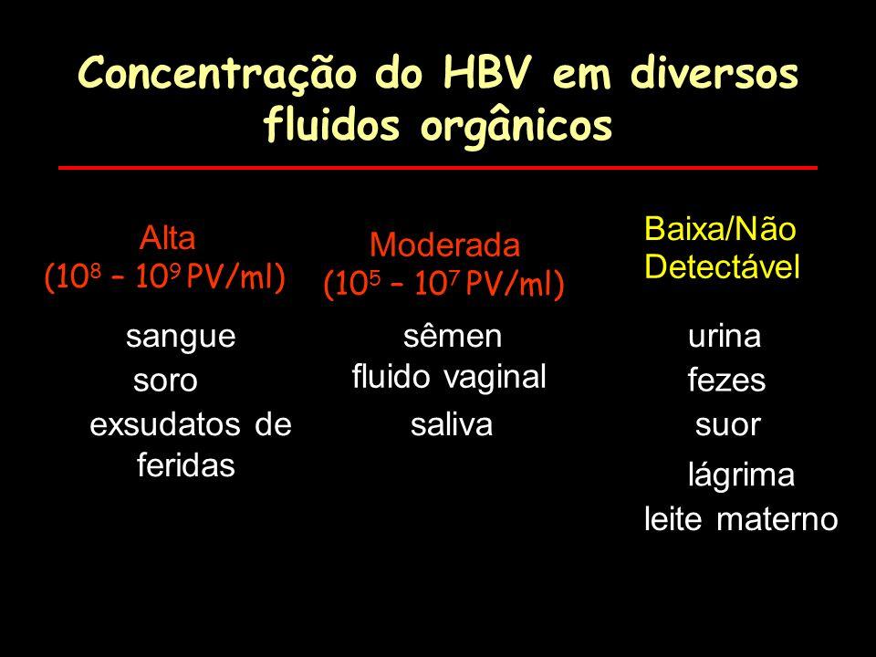 Concentração do HBV em diversos