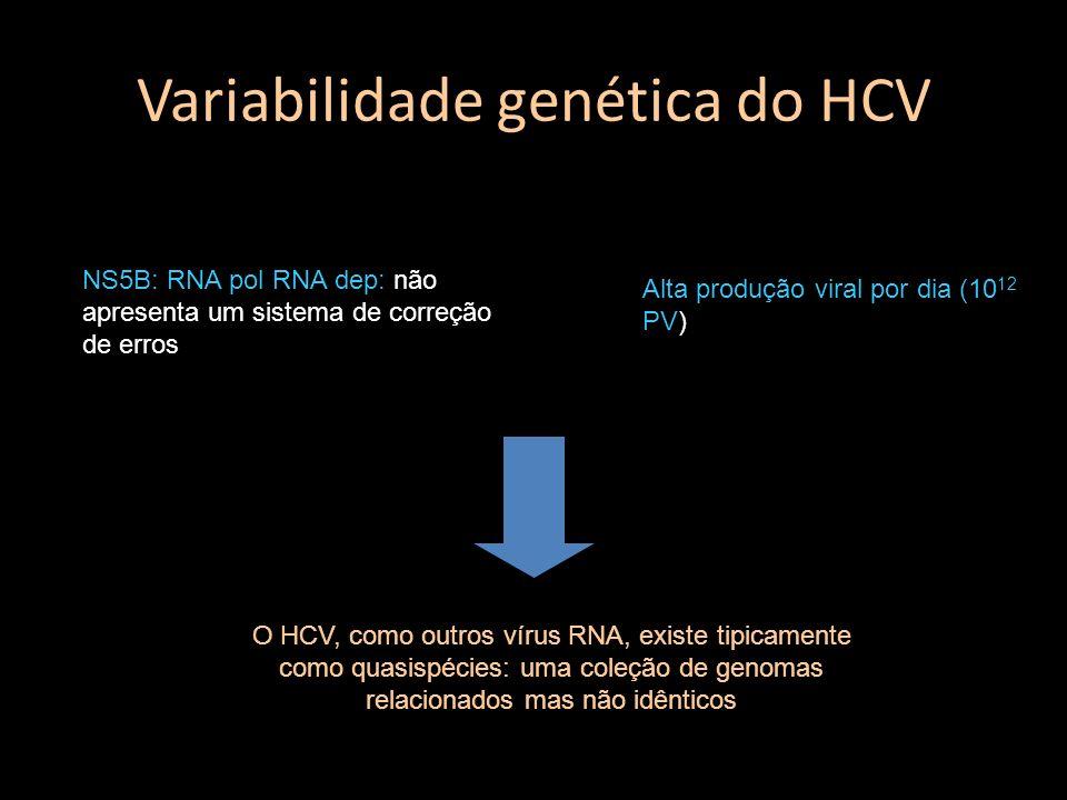 Variabilidade genética do HCV