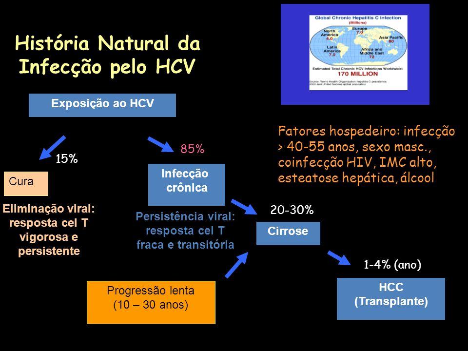 História Natural da Infecção pelo HCV