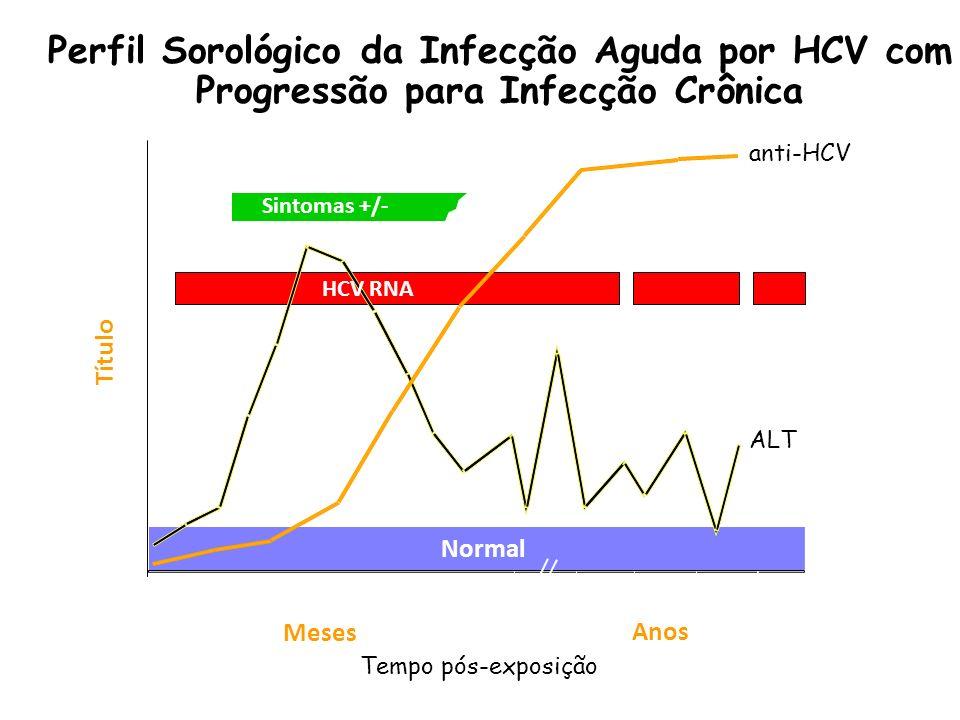 Perfil Sorológico da Infecção Aguda por HCV com Progressão para Infecção Crônica