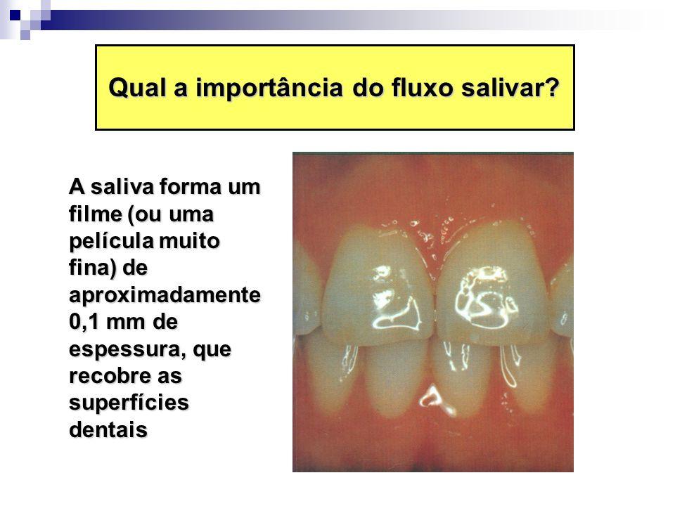 Qual a importância do fluxo salivar