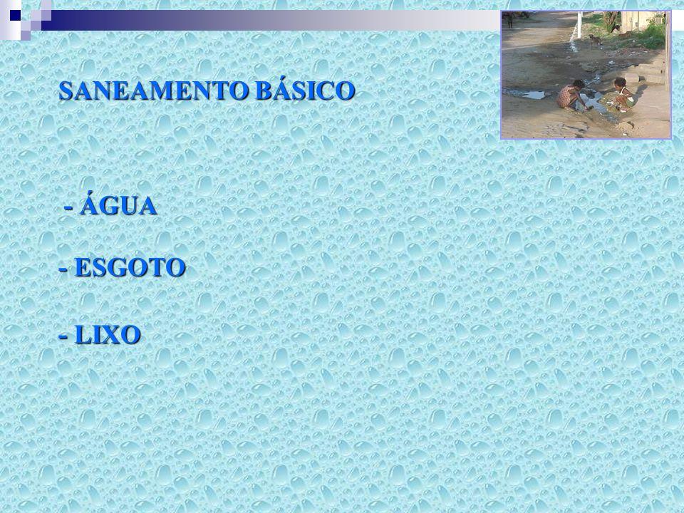 SANEAMENTO BÁSICO - ÁGUA - ESGOTO - LIXO