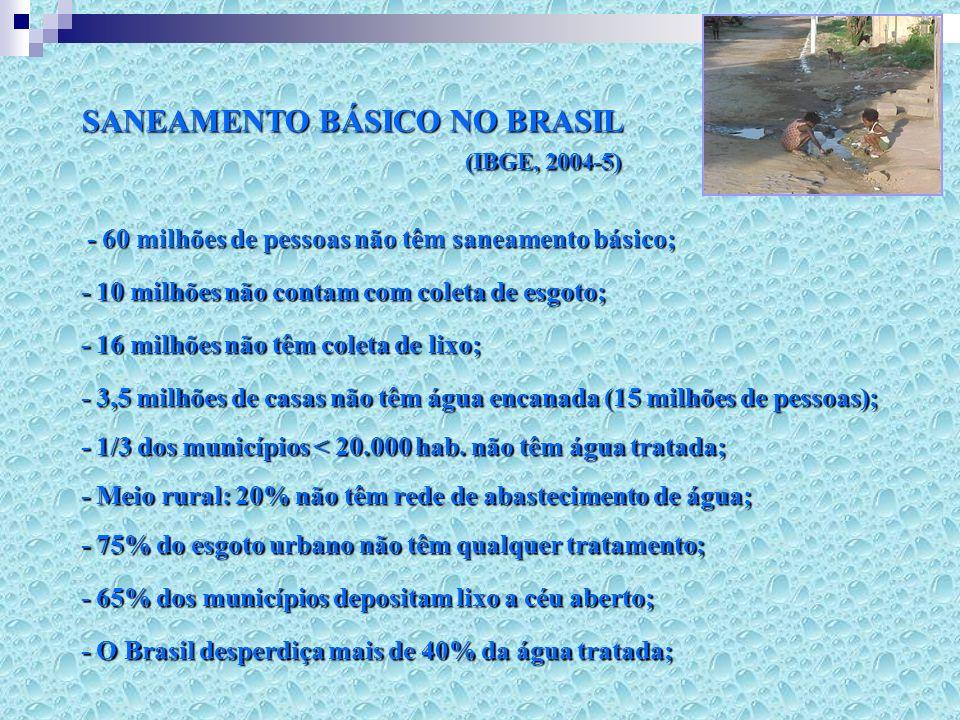 SANEAMENTO BÁSICO NO BRASIL (IBGE, 2004-5)