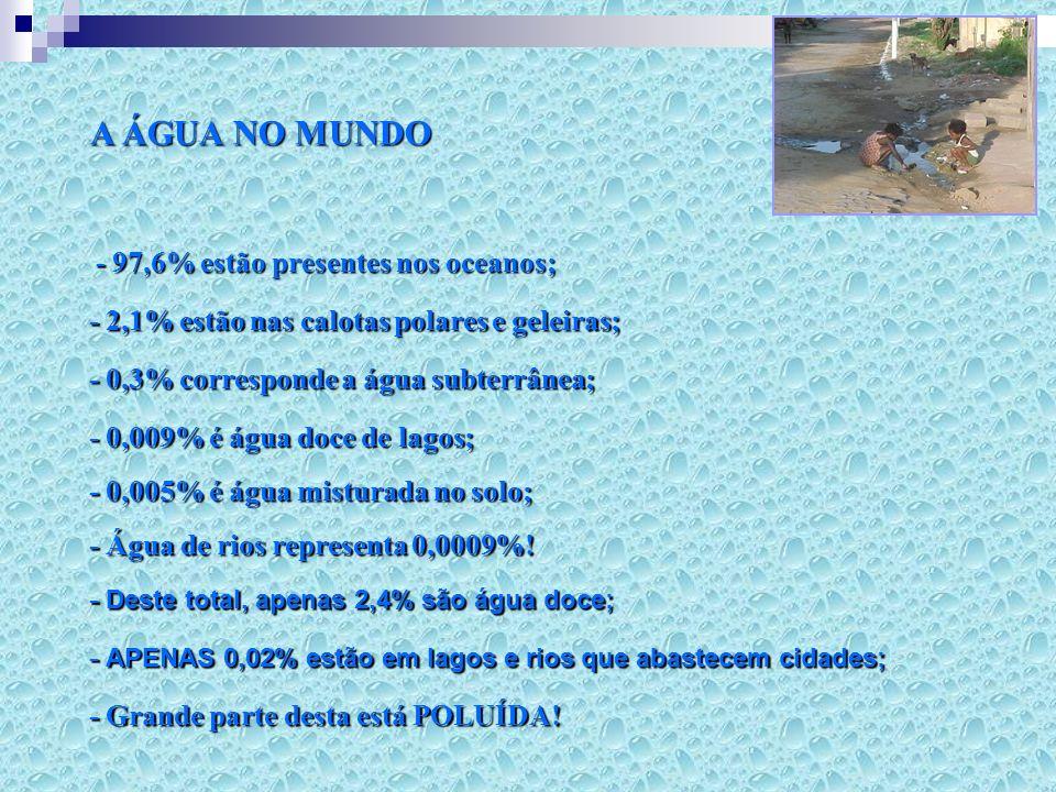 A ÁGUA NO MUNDO - 97,6% estão presentes nos oceanos;