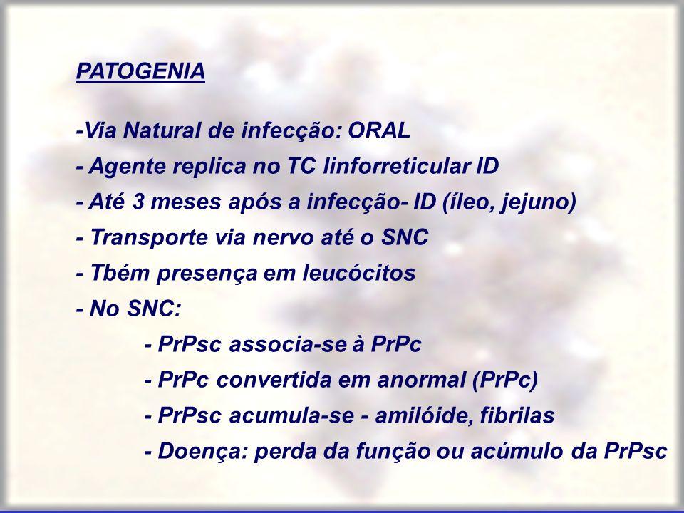 PATOGENIA -Via Natural de infecção: ORAL. - Agente replica no TC linforreticular ID. - Até 3 meses após a infecção- ID (íleo, jejuno)