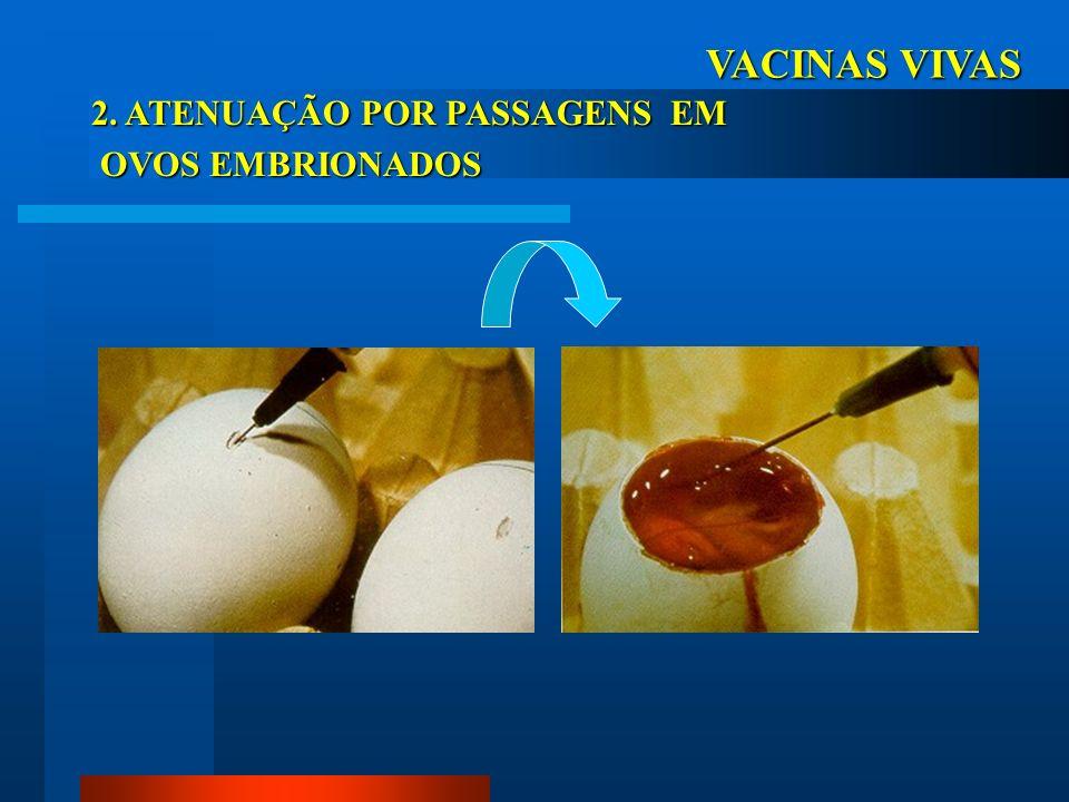 VACINAS VIVAS 2. ATENUAÇÃO POR PASSAGENS EM OVOS EMBRIONADOS