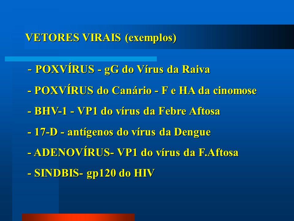 - POXVÍRUS - gG do Vírus da Raiva