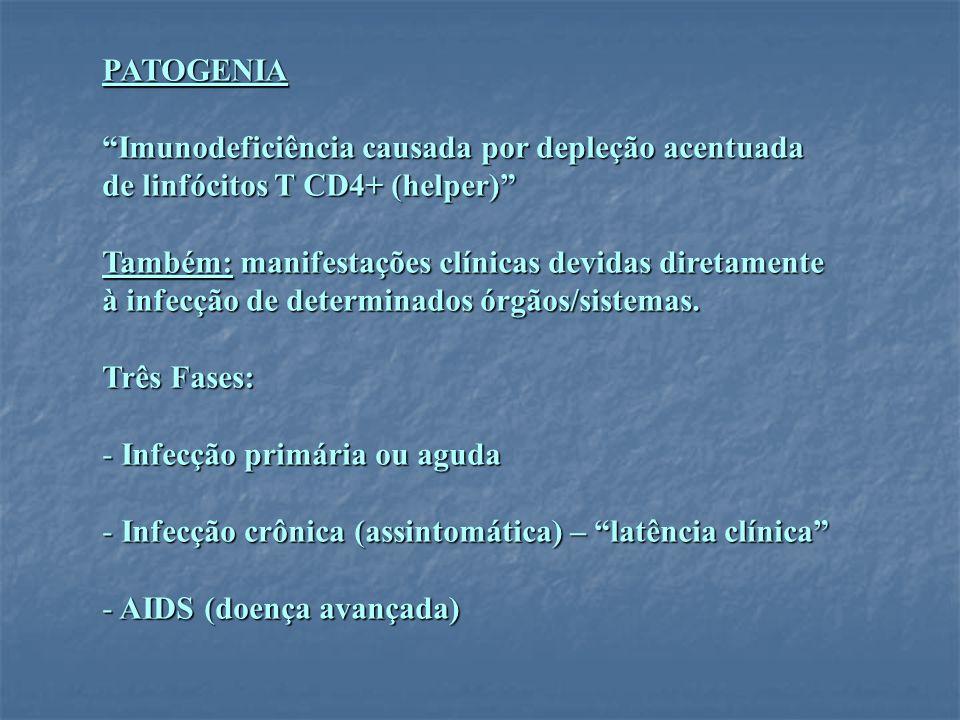 PATOGENIA Imunodeficiência causada por depleção acentuada. de linfócitos T CD4+ (helper) Também: manifestações clínicas devidas diretamente.