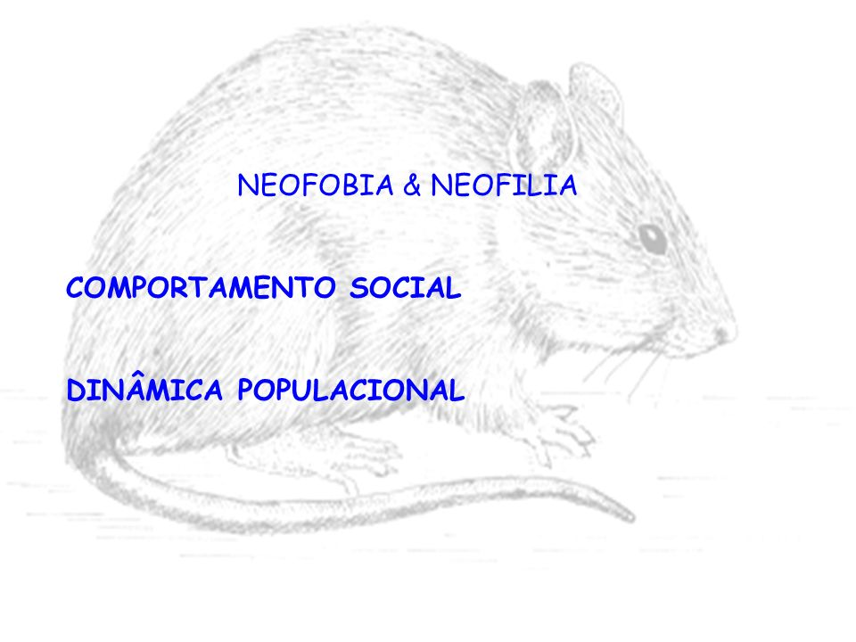 NEOFOBIA & NEOFILIA COMPORTAMENTO SOCIAL DINÂMICA POPULACIONAL