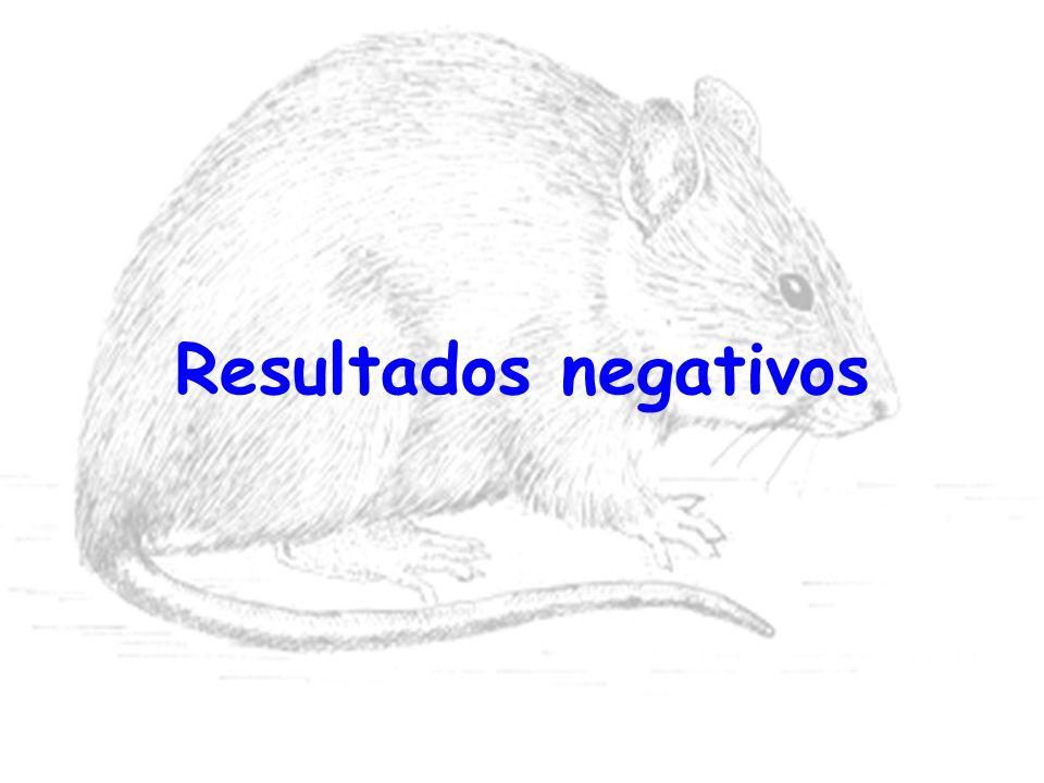 Resultados negativos