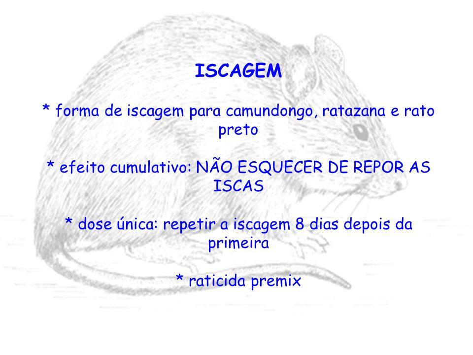 ISCAGEM * forma de iscagem para camundongo, ratazana e rato preto