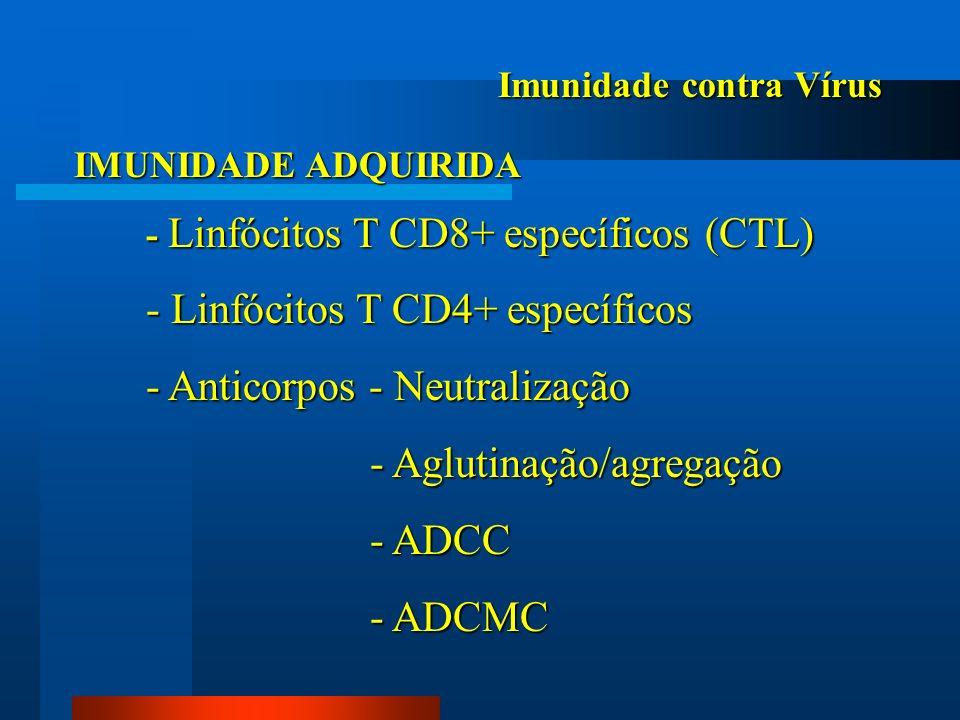 - Linfócitos T CD4+ específicos - Anticorpos - Neutralização