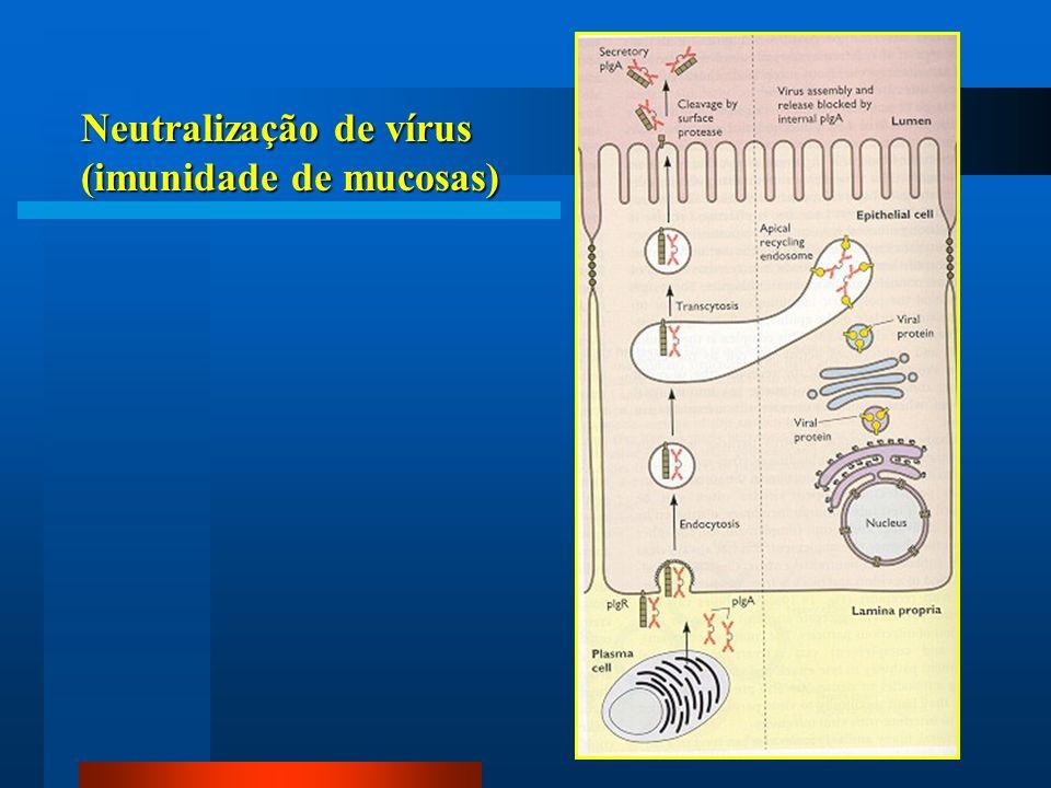 Neutralização de vírus