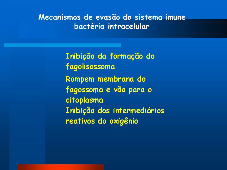 Mecanismos de evasão do sistema imune bactéria intracelular