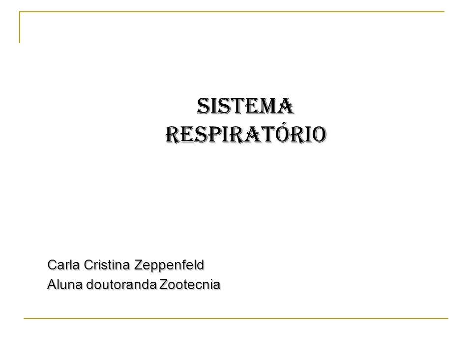SISTEMA RESPIRATÓRIO Carla Cristina Zeppenfeld