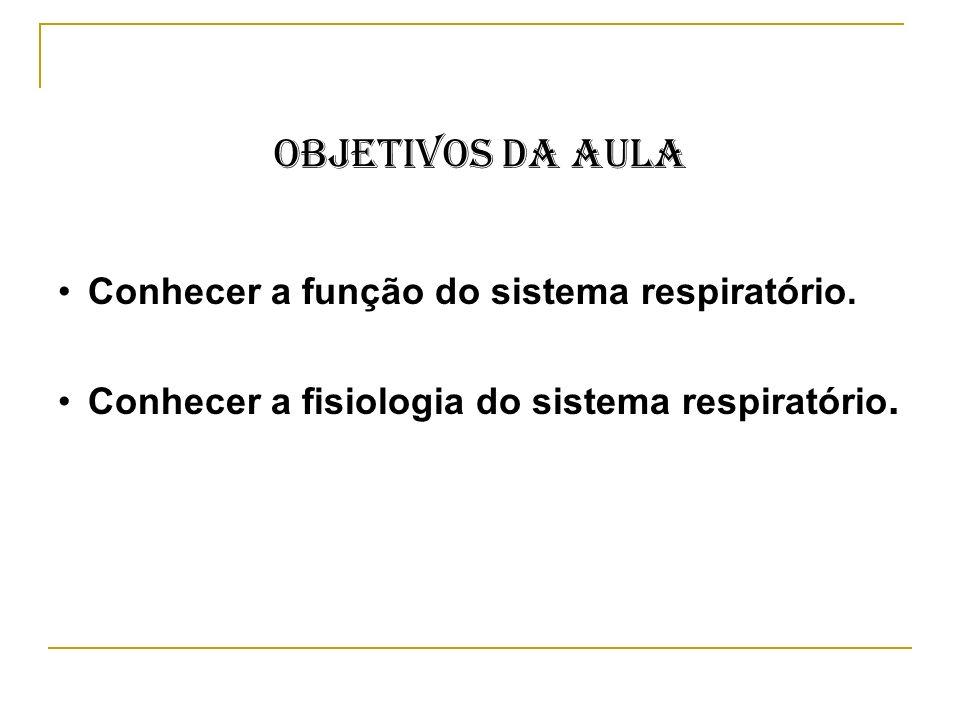 Objetivos da Aula Conhecer a função do sistema respiratório.