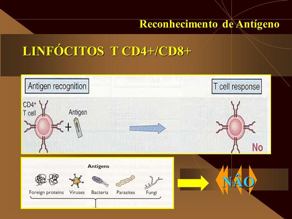 Reconhecimento de Antígeno