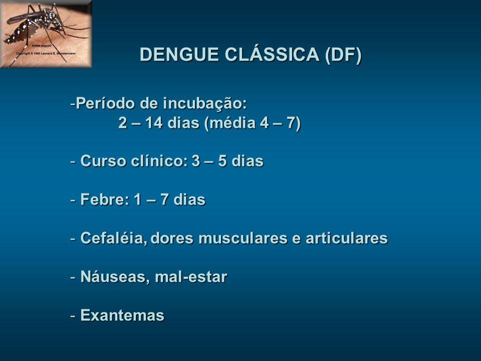 DENGUE CLÁSSICA (DF) Período de incubação: 2 – 14 dias (média 4 – 7)