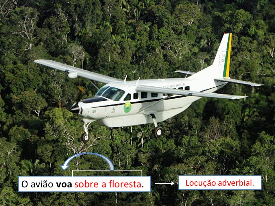 O avião voa sobre a floresta.