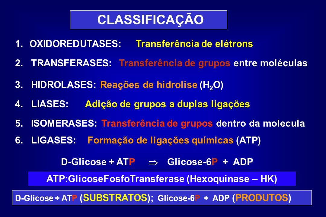 ATP:GlicoseFosfoTransferase (Hexoquinase – HK)