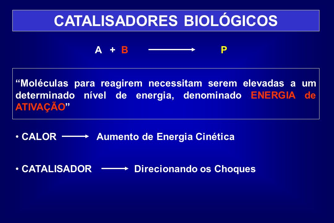 CATALISADORES BIOLÓGICOS