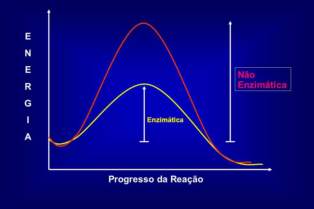 E N R G I A Progresso da Reação