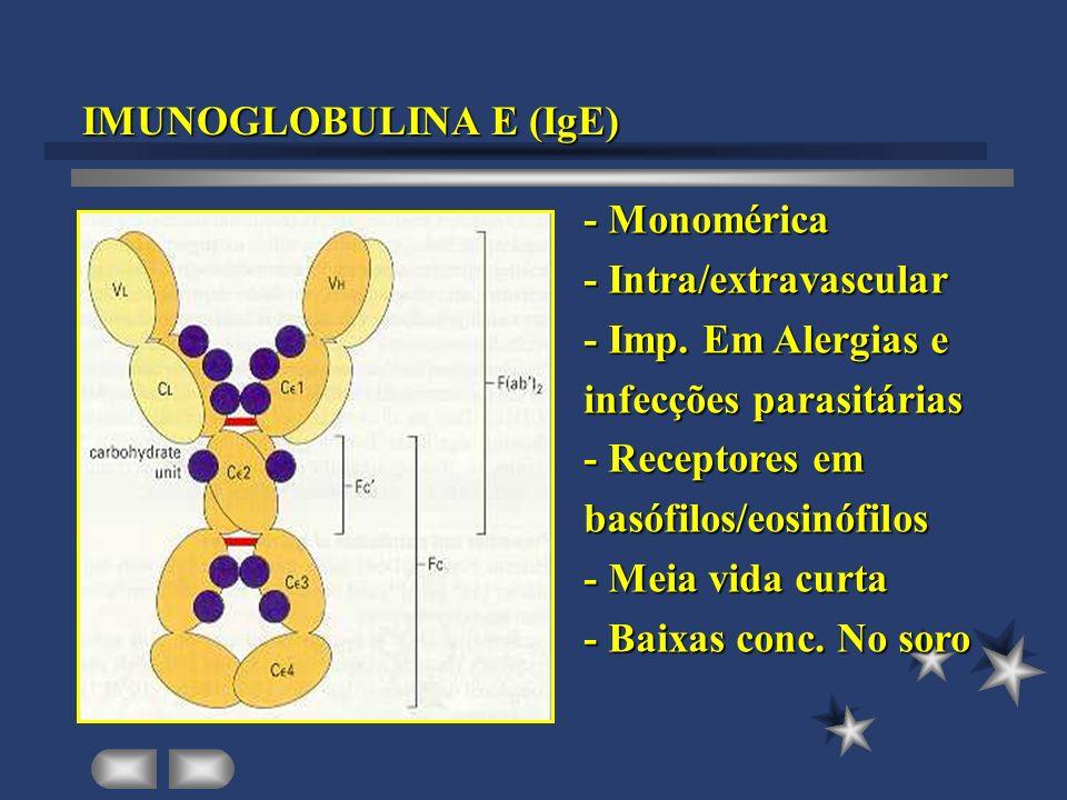 IMUNOGLOBULINA E (IgE)
