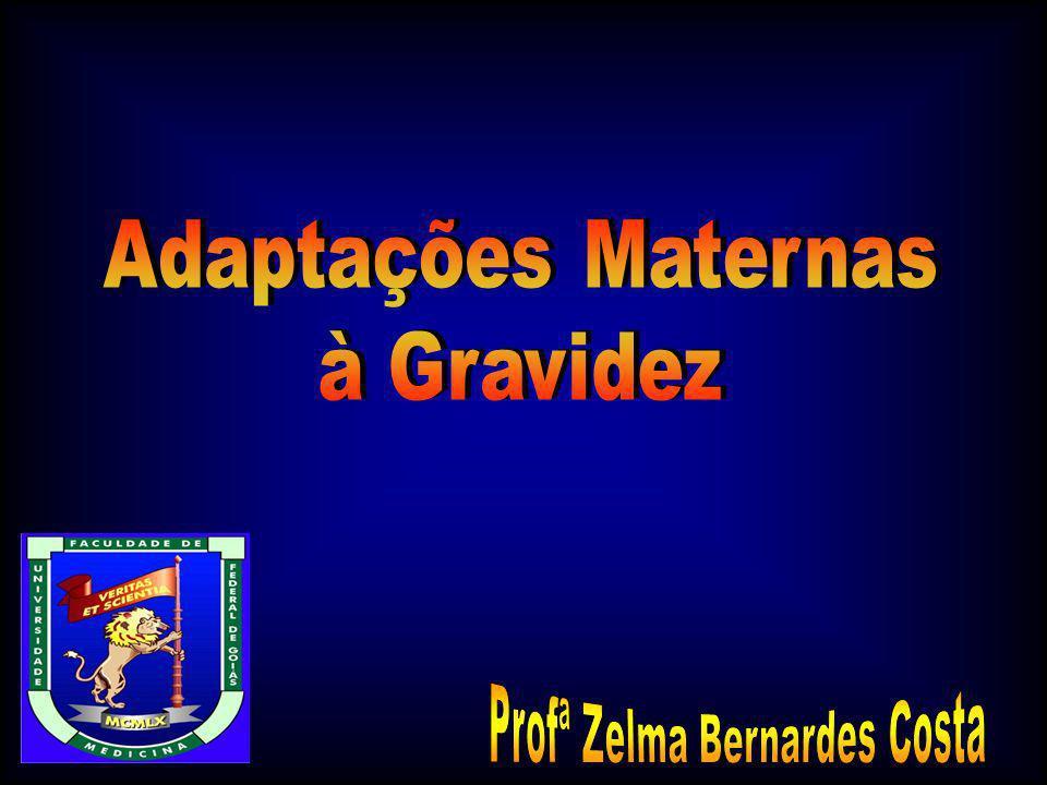 Profª Zelma Bernardes Costa