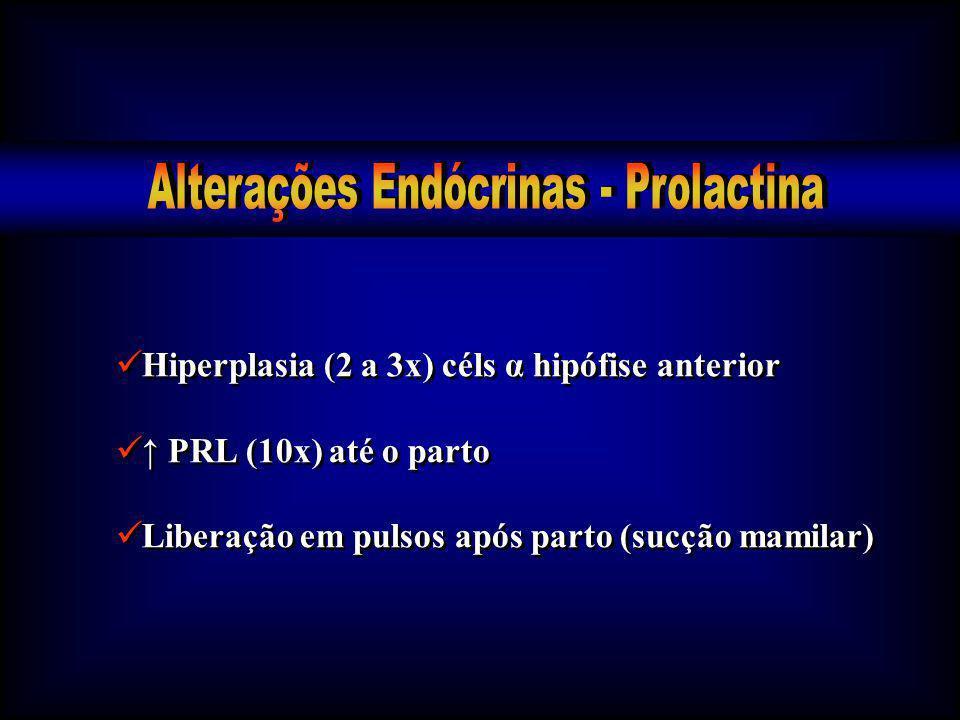 Alterações Endócrinas - Prolactina