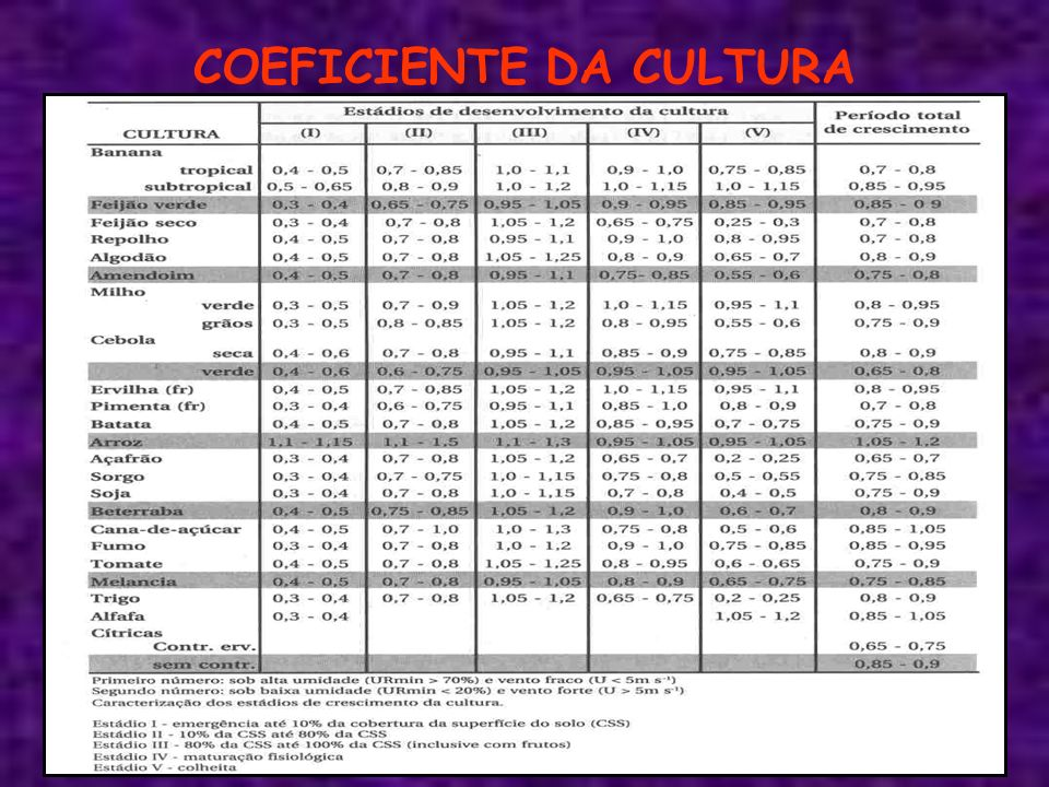 COEFICIENTE DA CULTURA