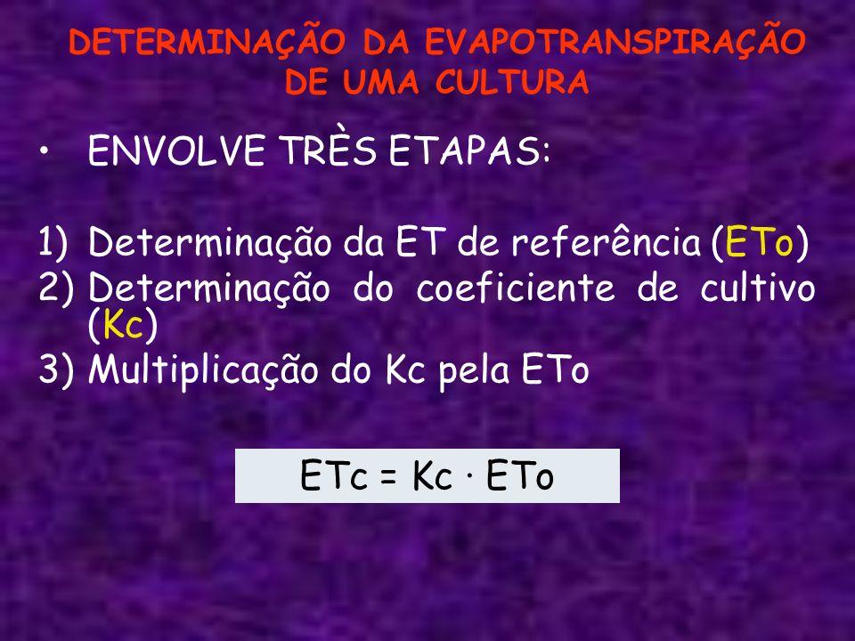 DETERMINAÇÃO DA EVAPOTRANSPIRAÇÃO DE UMA CULTURA
