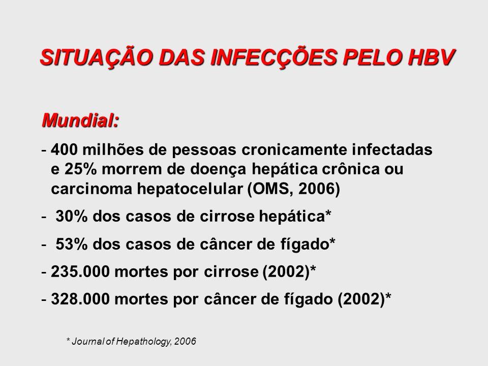SITUAÇÃO DAS INFECÇÕES PELO HBV