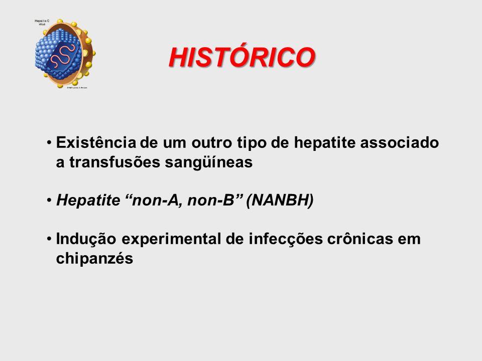 HISTÓRICO Existência de um outro tipo de hepatite associado a transfusões sangüíneas. Hepatite non-A, non-B (NANBH)