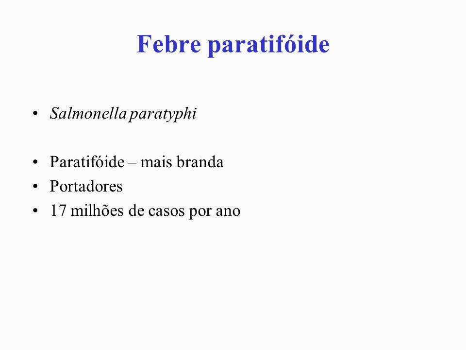 Febre paratifóide Salmonella paratyphi Paratifóide – mais branda