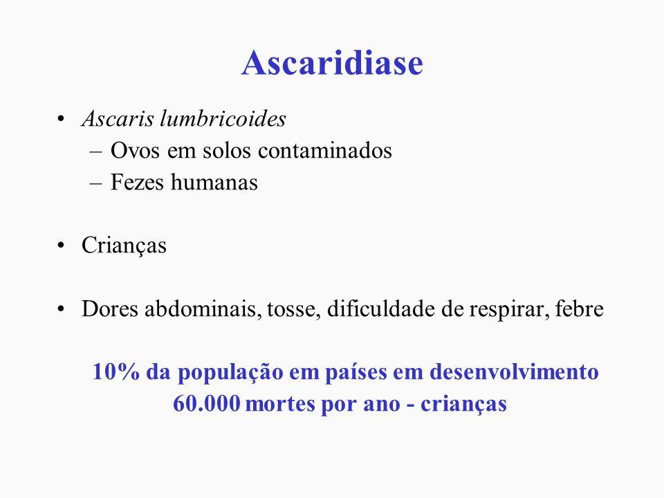 Ascaridiase Ascaris lumbricoides Ovos em solos contaminados