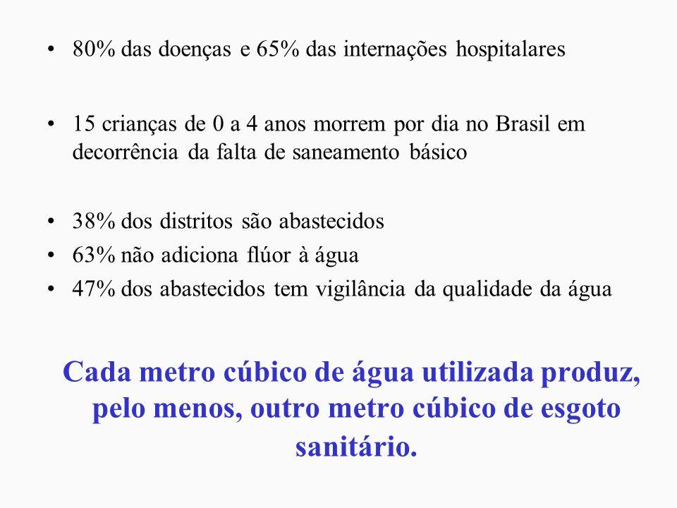 80% das doenças e 65% das internações hospitalares