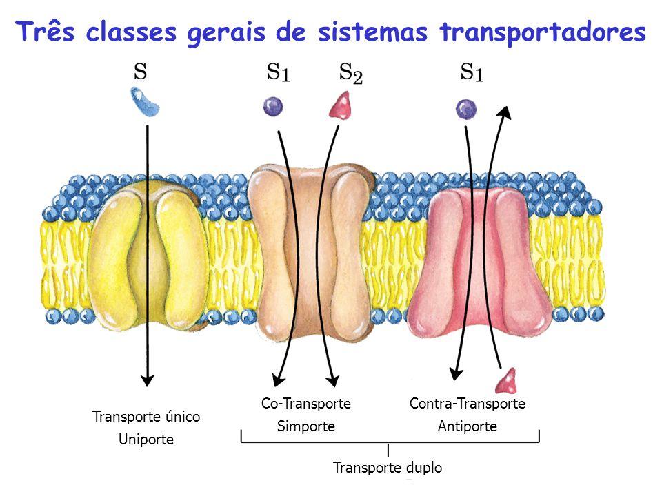 Três classes gerais de sistemas transportadores