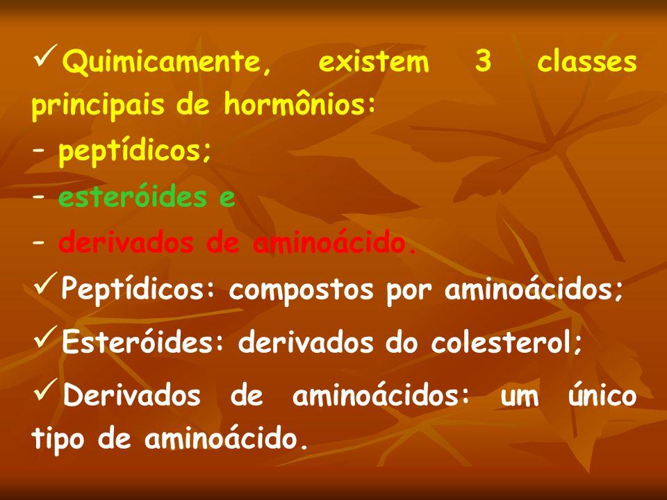 Quimicamente, existem 3 classes principais de hormônios: