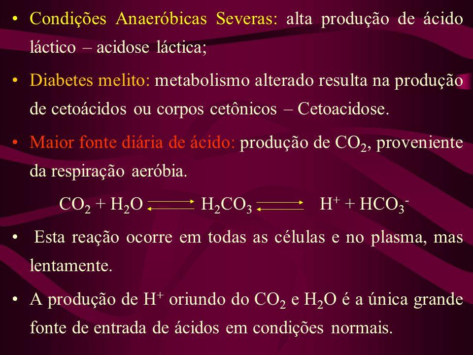 Condições Anaeróbicas Severas: alta produção de ácido láctico – acidose láctica;