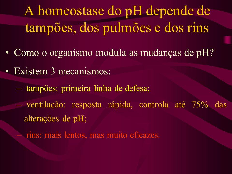 A homeostase do pH depende de tampões, dos pulmões e dos rins